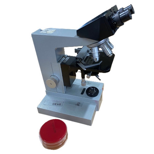 Microscope and petri dish used to represent Keseca Vet Clinic's microbiologist, Denise Burnett